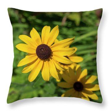 Sun Drenched Daisy Throw Pillow
