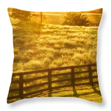 Sun-drenched Pasture Throw Pillow by Mark Miller