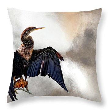 Sun-dried Throw Pillow by Cyndy Doty