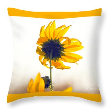 Sun Flower 101 Throw Pillow