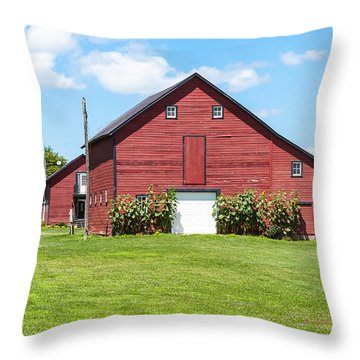 Throw Pillow featuring the photograph Sun Flower Barn by Edward Peterson
