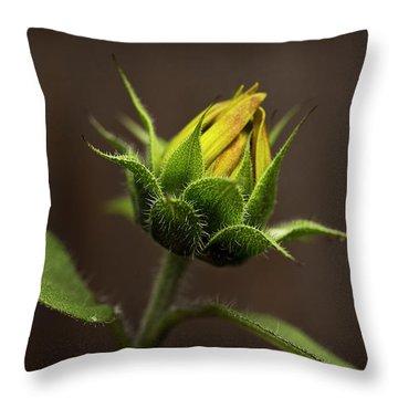 Sun Flower Blossom Throw Pillow