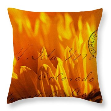 Throw Pillow featuring the photograph Sun Flower Envelope by Michael Hope
