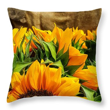 Sun Flowers And Tomatoes Throw Pillow