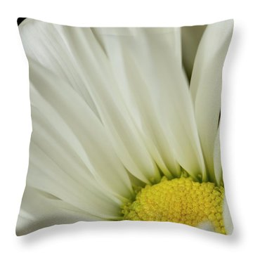 Sun Glow Throw Pillow