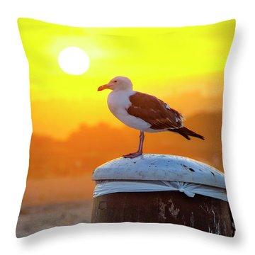 Sun Gull Throw Pillow