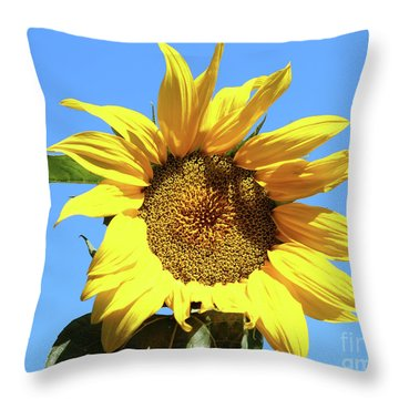 Sun In The Sky Throw Pillow
