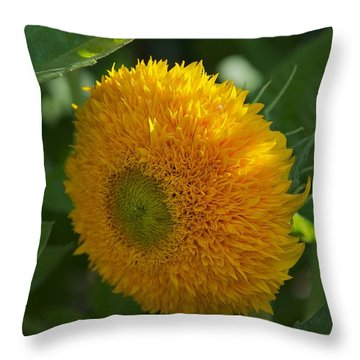 Throw Pillow featuring the photograph Sun by Joseph Yarbrough