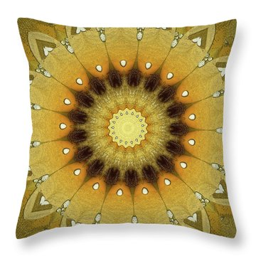 Sun Kaleidoscope Throw Pillow
