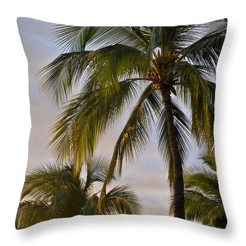 Sun Kissed Throw Pillow by Gina Savage