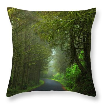 Sun-kissed Throw Pillow by Rick Furmanek