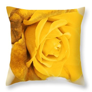 Throw Pillow featuring the photograph Sun Kissed Rose by Athala Carole Bruckner