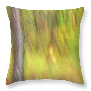 Sun Kissed Tree Throw Pillow