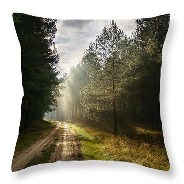Sun Light At Pine Forest Throw Pillow