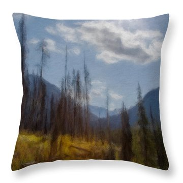 Sun Light In The Forest Throw Pillow