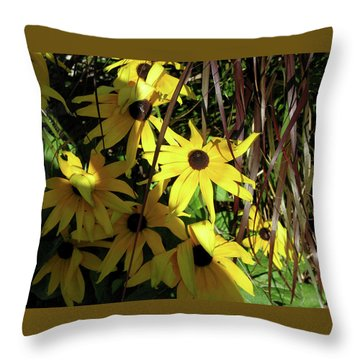 Sun Lit Diasies Throw Pillow by Michele Wilson