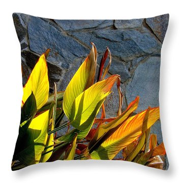 Sun Loving Throw Pillow