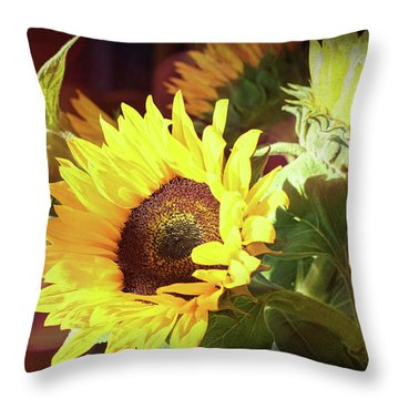 Throw Pillow featuring the photograph Sun Of The Flower by Michael Hope