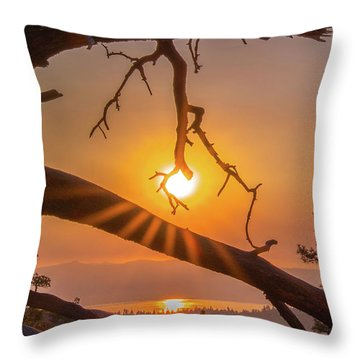 Sun Ornament - Cropped Throw Pillow