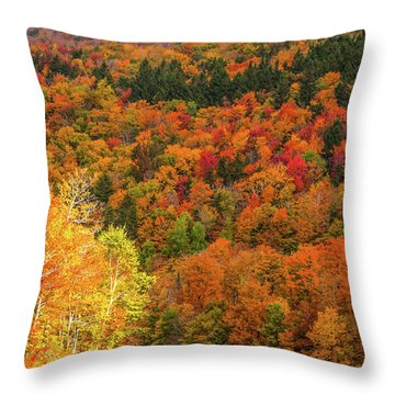 Sun Peeking Through Throw Pillow