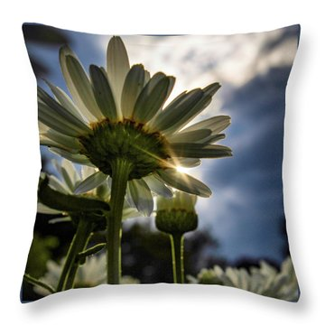 Sun Rain Throw Pillow