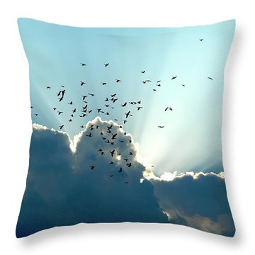 Sun Ray Aerobatics Blue Sky Throw Pillow