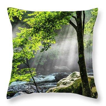 Sun Rays On Williams River  Throw Pillow