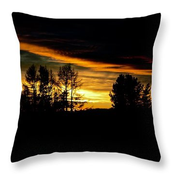 Sun Setting November Throw Pillow