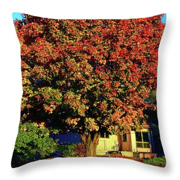 Sun-shining Autumn Throw Pillow