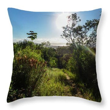 Sun Shining Over The Atlantic Forest Throw Pillow