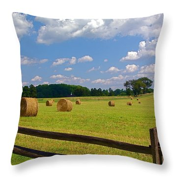 Throw Pillow featuring the photograph Sun Shone Hay Made by Byron Varvarigos