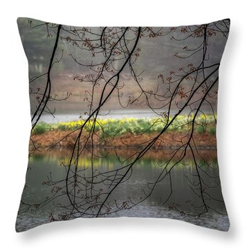 Throw Pillow featuring the photograph Sun Shower by Bill Wakeley