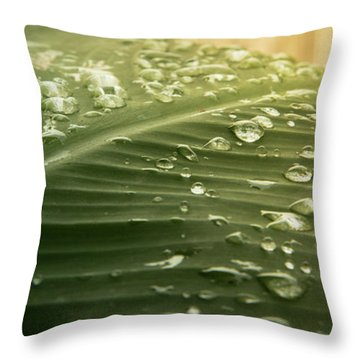 Sun Shower Throw Pillow