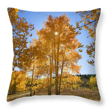 Sun Through Aspens Throw Pillow by Ron Dahlquist - Printscapes
