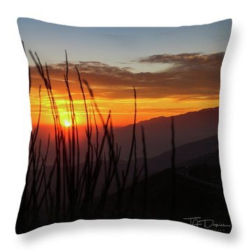 Sun Through The Blades Throw Pillow