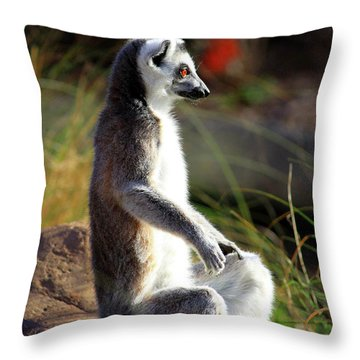 Sunbathing Throw Pillow by Inspirational Photo Creations Audrey Woods