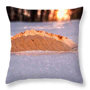Sunbathing Throw Pillow by Craig Szymanski