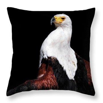 Sunbathing Eagle Throw Pillow