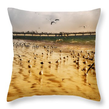Sunbathing Seagulls Throw Pillow by Joseph Hollingsworth