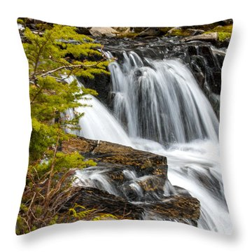 Sunbeam Creek I Throw Pillow