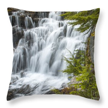 Sunbeam Creek II Throw Pillow