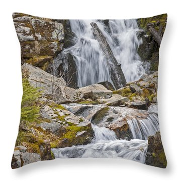 Sunbeam Creek IIi Throw Pillow