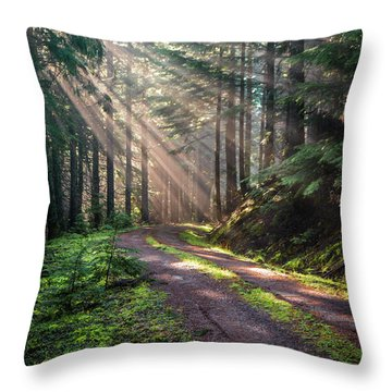 Sunbeam In Trees Portrait Throw Pillow