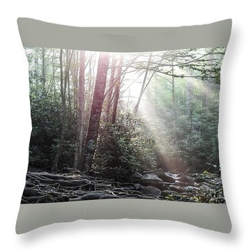 Sunbeam Streaming Into The Forest Throw Pillow