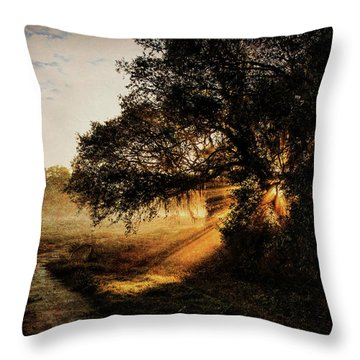 Sunbeam Sunrise Throw Pillow