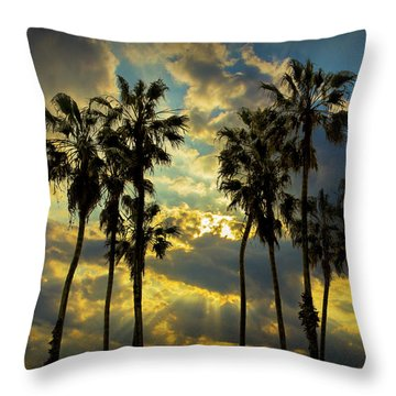 Throw Pillow featuring the photograph Sunbeams And Palm Trees By Cabrillo Beach by Randall Nyhof