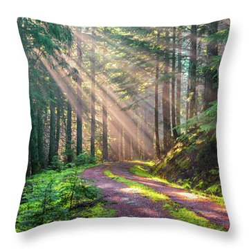 Sunbeams In Trees Throw Pillow