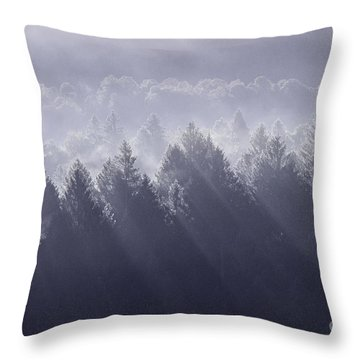 Sunbeams Throw Pillow by Yuri Santin