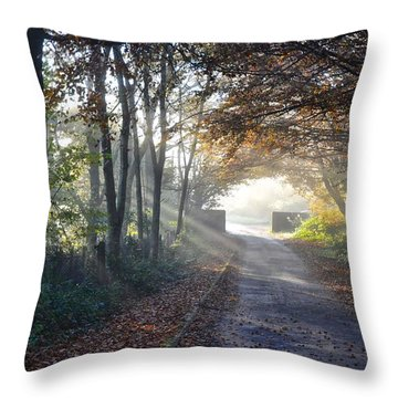 Sunburst In Forest Row Throw Pillow