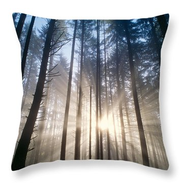 Sunburst In The Forest Throw Pillow by Greg Vaughn - Printscapes